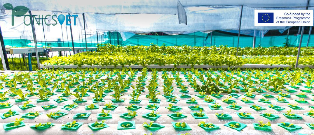 hydroponics vet